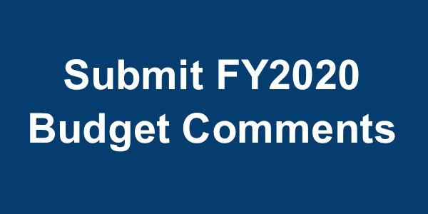 Budget Comments Button